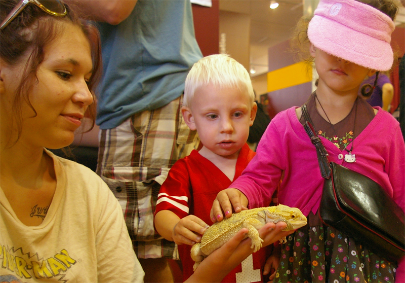 A student holding a lizard for two children to touch